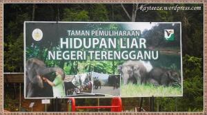 sanctuary-gajah